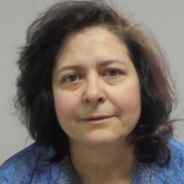 Dina Chioni Addiction Therapist